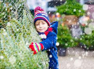 Weihnachtsbaumkauf als Familienerlebnis