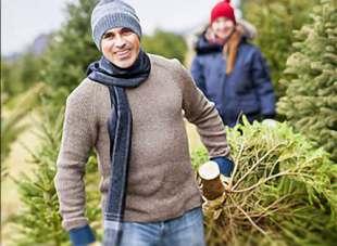 Unsere Tipps - Weihnachtsbaum sägen